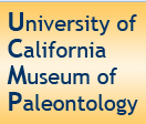 [Museum of Paleontology, University of California Logo]