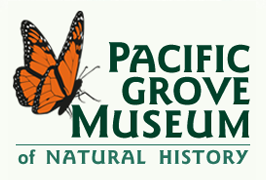 [Pacific Grove Museum of Natural History Logo]